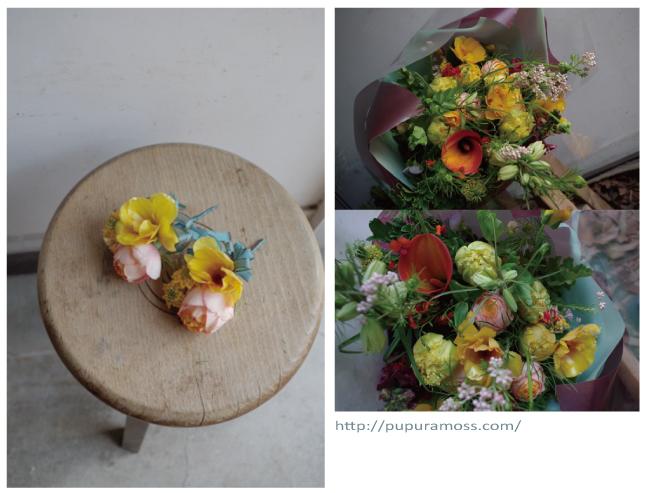 separation shoes cc7ec a7737 アレンジ・切り花・山野草・草もの盆栽:ププラモス